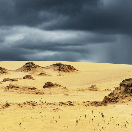 Nambung Sandscape 1, WA