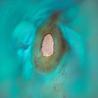 Chris Saunders - 'Aerial Coast 019'