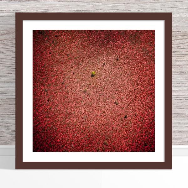 Chris Saunders - 'Aerial Outback 010' Dark Frame