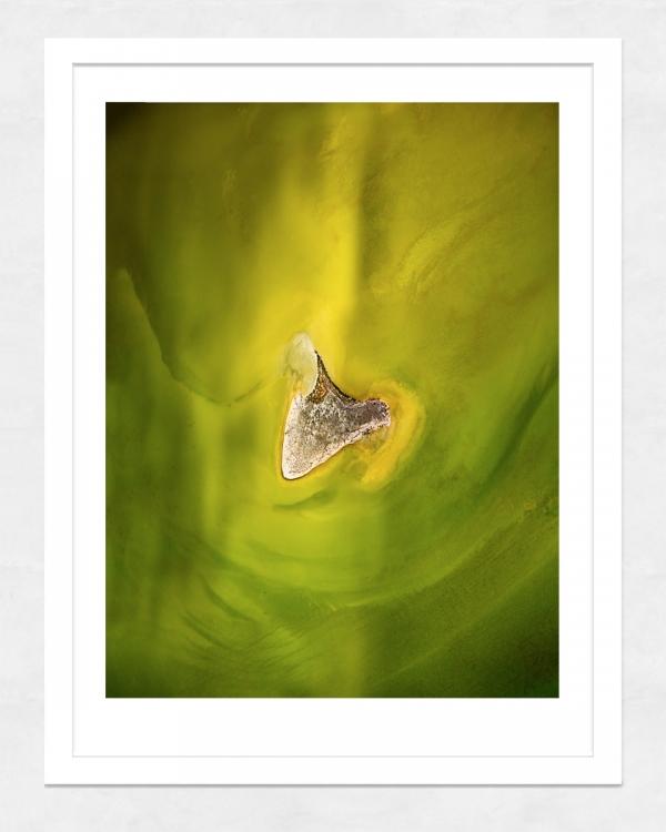 Chris Saunders - 'Aerial Salt 040' White Frame