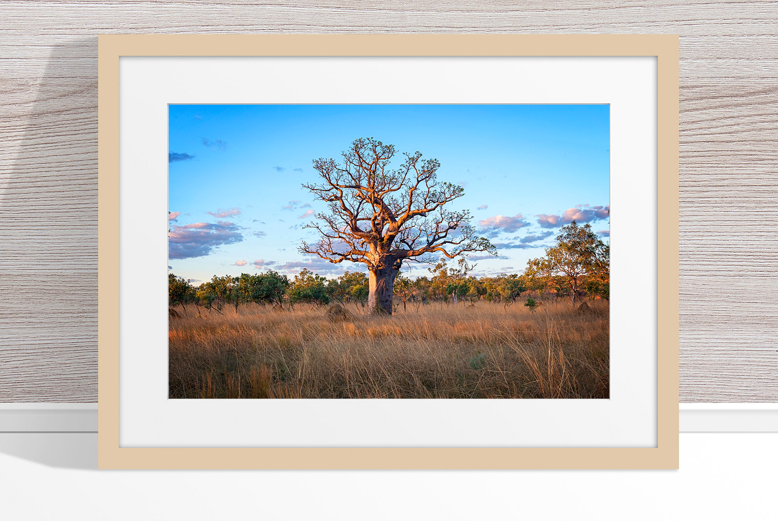 Jason Mazur - 'Boab Tree, Kimberley 032' Light Wood Frame