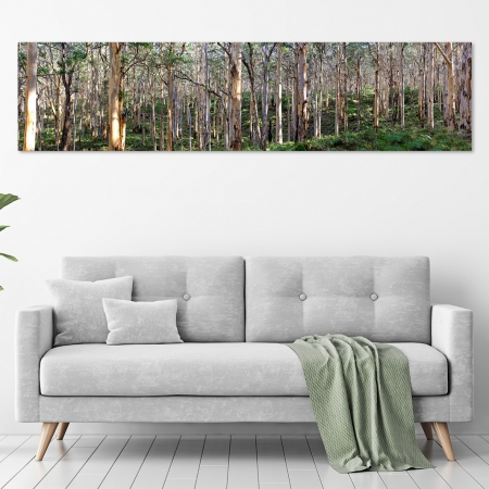 Jason Mazur - 'Boranup Forest, Margaret River W.A. 034' in a room