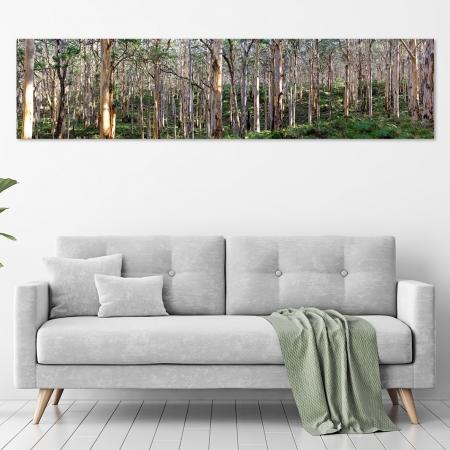 Jason Mazur - 'Boranup Forest, Margaret River W.A. 034' in a room