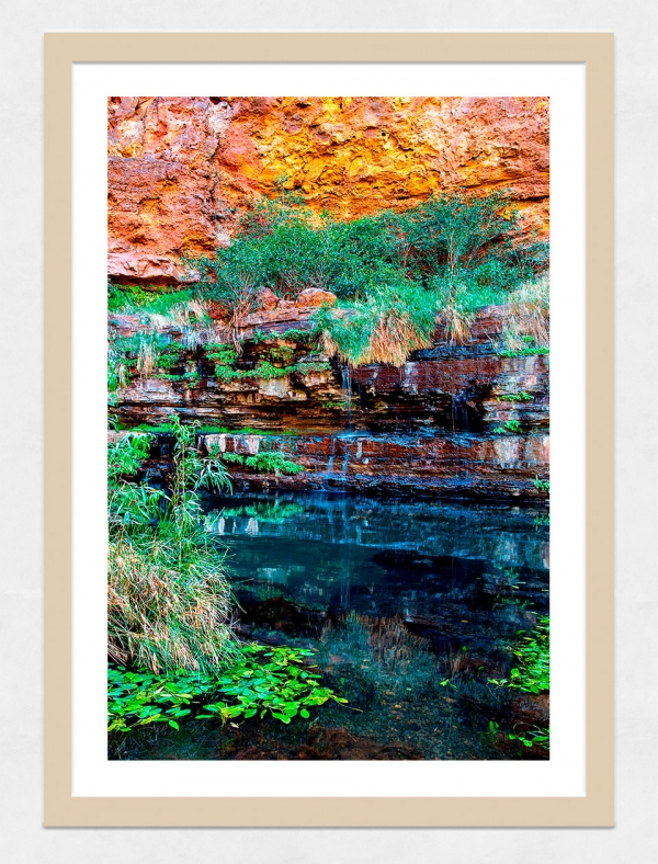 Jason Mazur - 'Circular Pool, Dales Gorge 027' Light Wood Frame