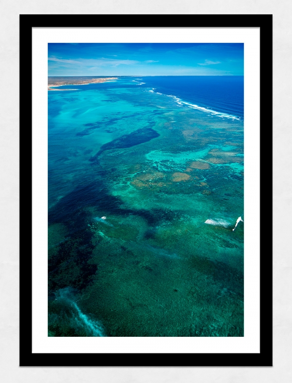 Jason Mazur - 'Ningaloo Reef, Coral Bay 013' Black Frame