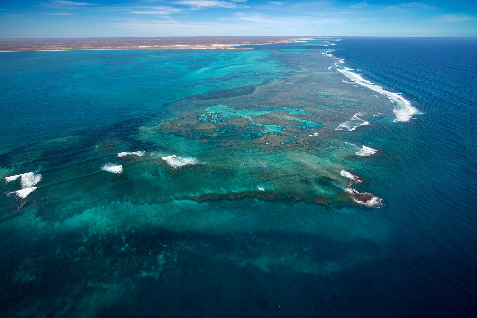 Jason Mazur - 'Ningaloo Reef, Coral Bay 014'