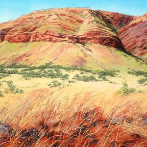 'King Leopold Range' by Jana Vodesil-Baruffi