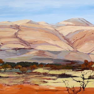 'Pilbara Country' by Maryann Devereux
