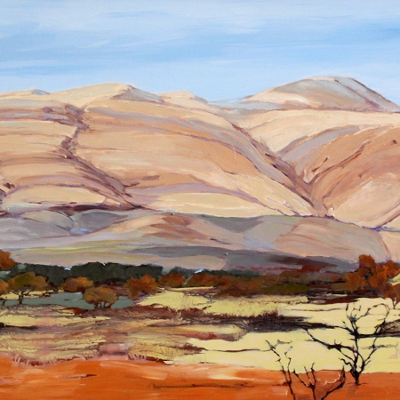 Maryann Devereux - 'Pilbara Country'
