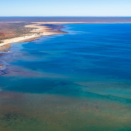 Jason Mazur - 'Hamelin Pool, Shark Bay 769'