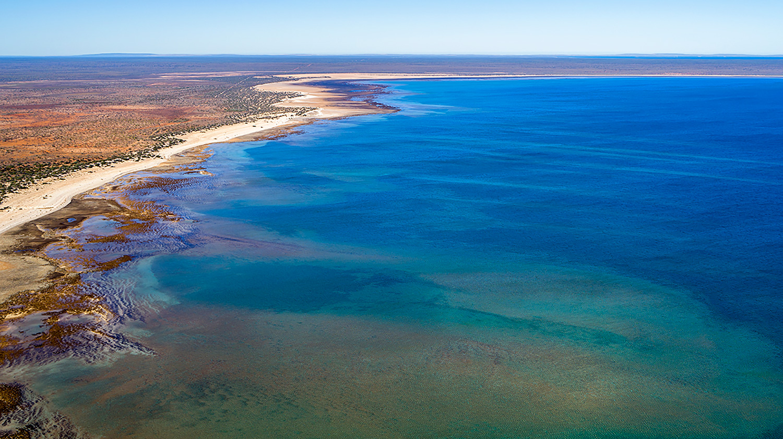 Jason Mazur - 'Hamelin Pool, Shark Bay 769'