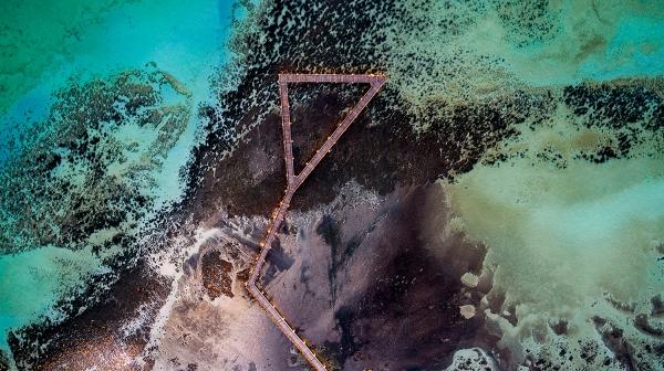 Jason Mazur - 'Stromatolites, Hamelin Pool, Shark Bay 885'