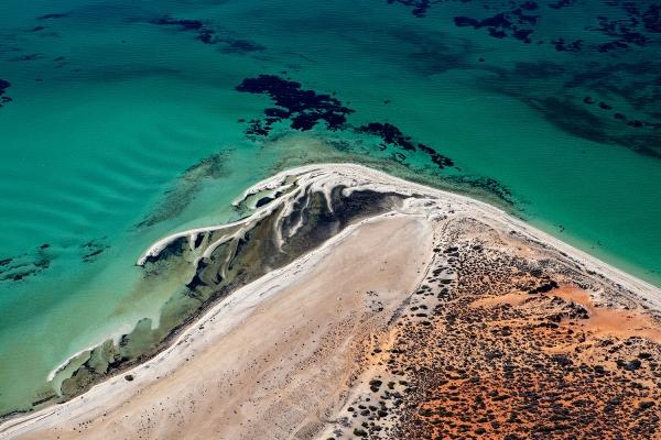 Jason Mazur - 'Shark Bay Aerial 171'