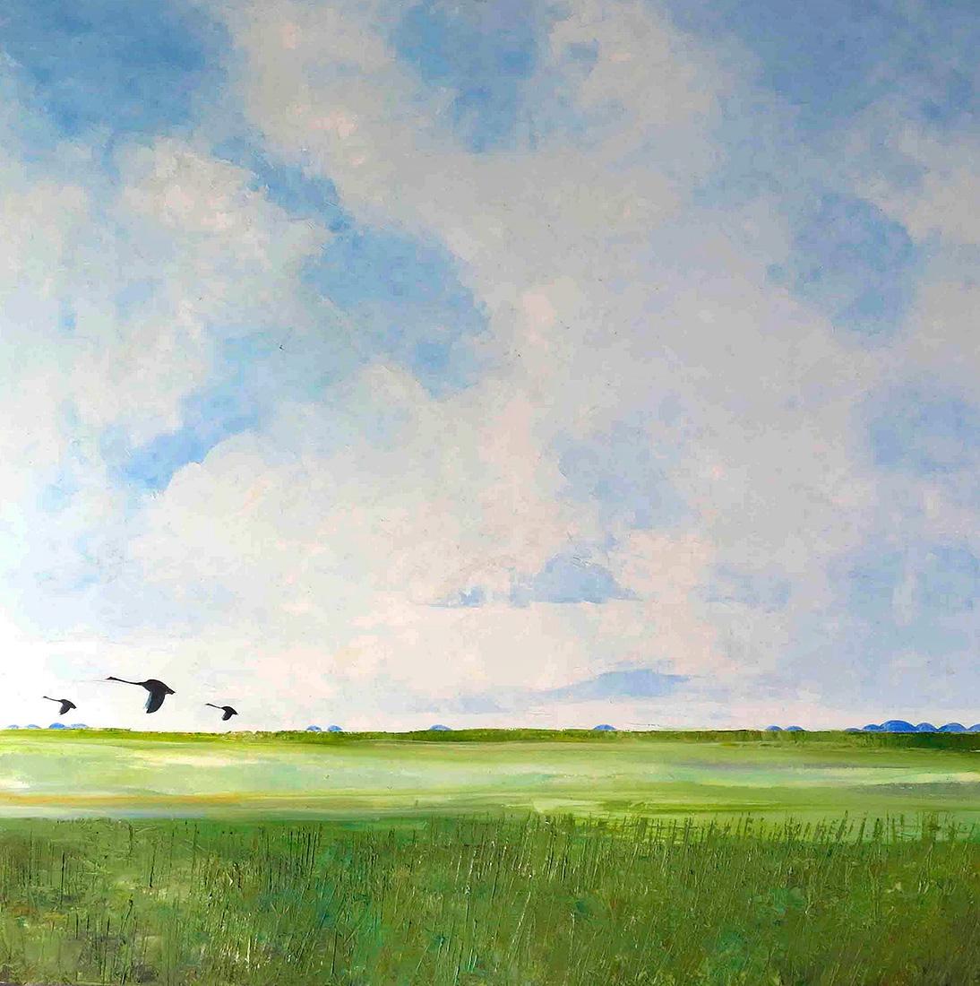 John Graham - 'Black Swans'