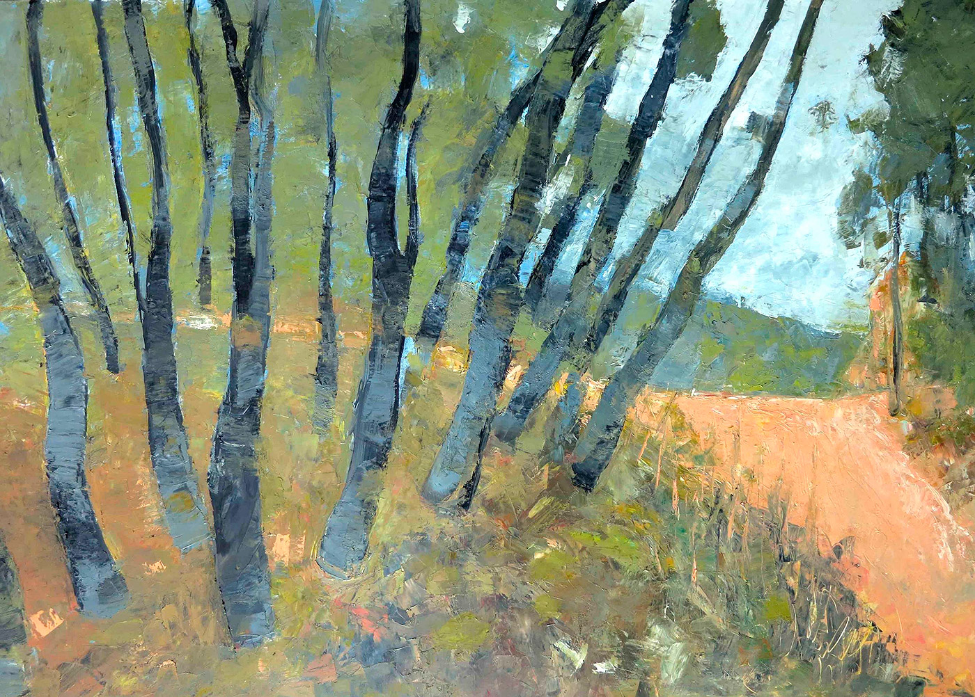 John Graham - 'You Yangs Landscape Number III'