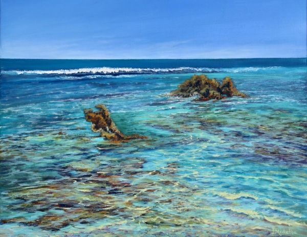 Reef-Shallows