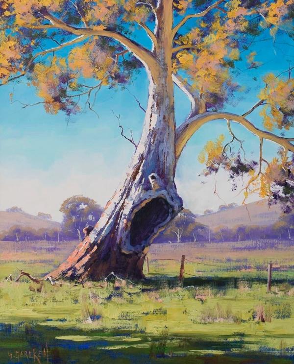 Old Warrior Gum, Australia