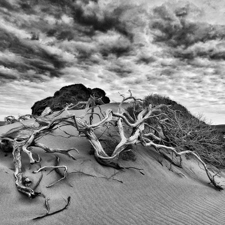 Injidup Dunes, Injidup WA