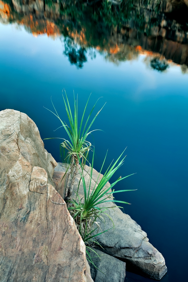 Barnett River Gorge, Kimberley