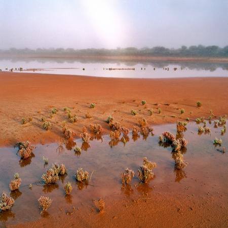Misty Morning near Cue, Western Australia