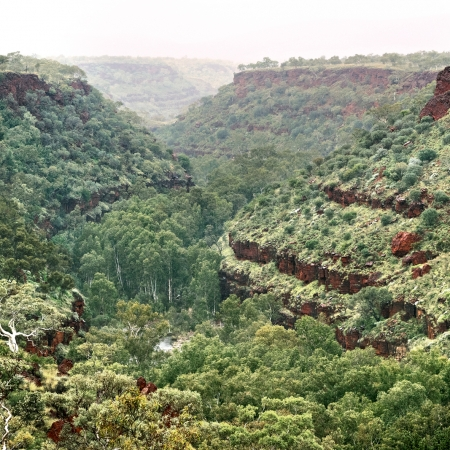 Dales Gorge with Morning Fog, Karijini NP
