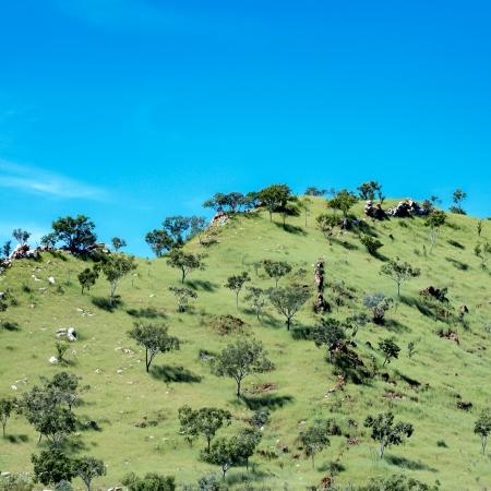 Landscape #2, Wyndham
