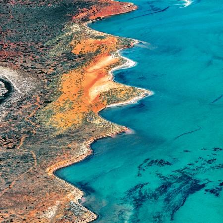 Shark Bay Aerial #10