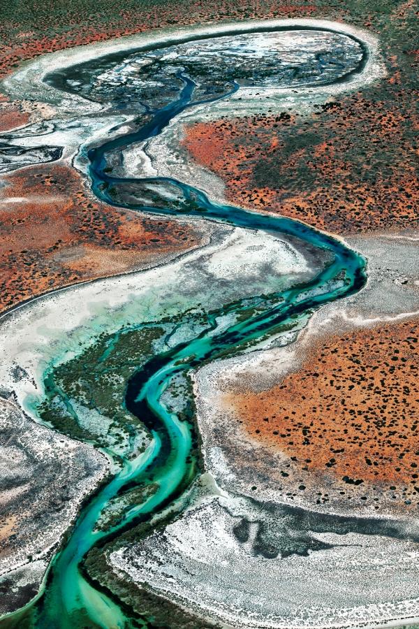 Shark Bay Aerial #11