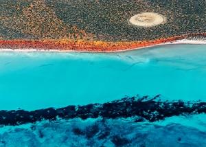Shark Bay Aerial #6, Shark Bay WA