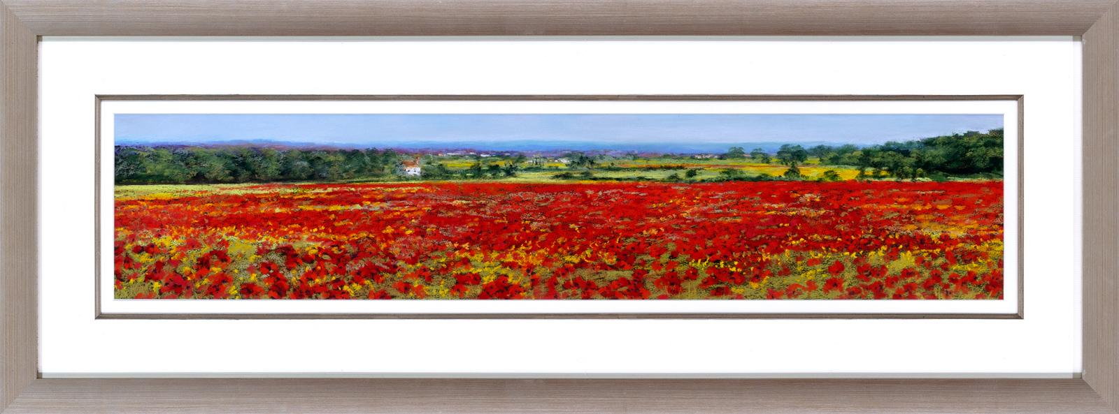Flanders Poppy Field Framed