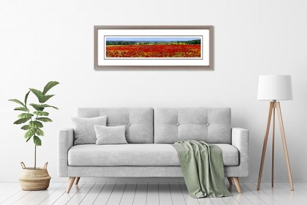 Flanders Poppy Field Framed in a room