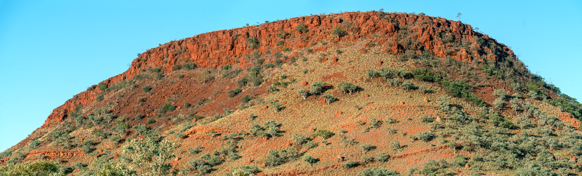 Hamersley Panorama